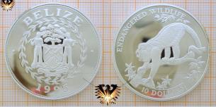 Münze mit Brüllaffe, 10 Dollars 1995, Belize,  Vorschaubild