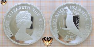 Buckelwal: 5 Falkland-Pfund  1979, Falklandinseln   Vorschaubild