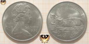 Münze mit Nilpferd, Gambia, One Dollar, 1970,  Vorschaubild