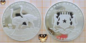 Vogel Strauß, Struthio camlus, 10000 Somalia Shillings  Vorschaubild