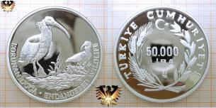 Waldrapp, 50.000 Lira, 1994, Türkei, endangered  Vorschaubild