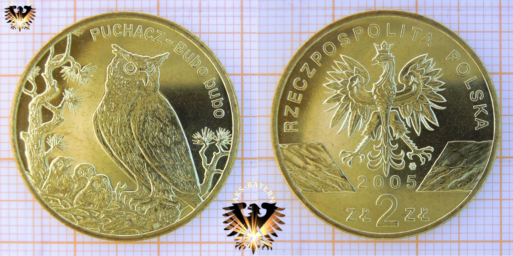Münze 2 Złote Polen 2005 Puchacz Bubo Bubo
